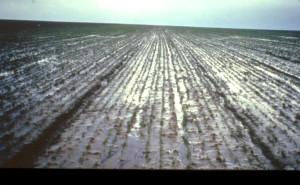 Erosion pluie